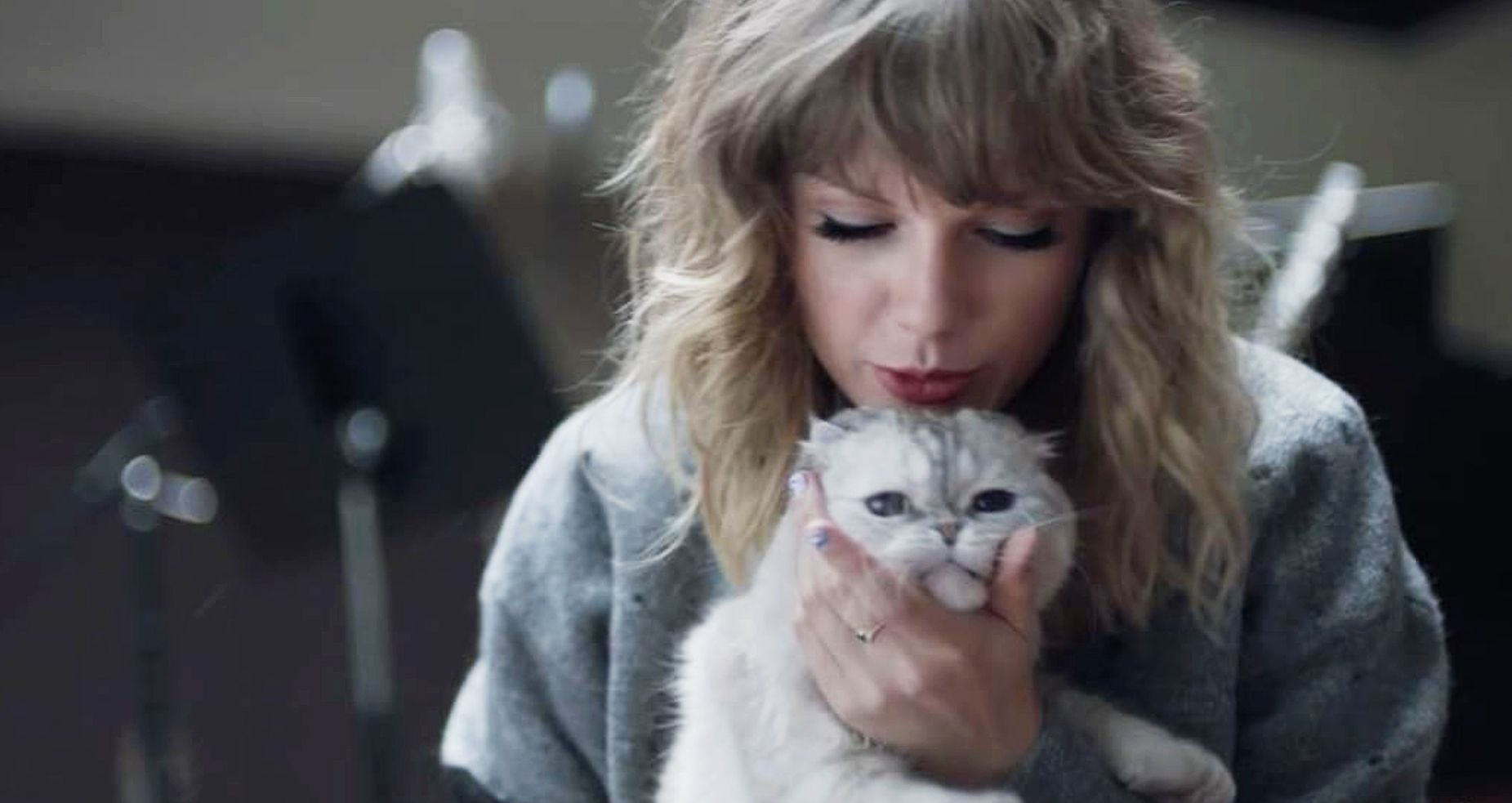 die taylor swifts cat - HD 1851×983